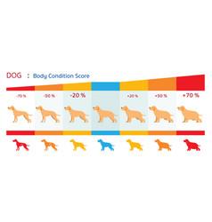 Dog body condition score vector