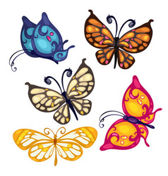 Five colorful beautiful butterfly insect vector image