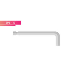 Hex key for master realistic design vector