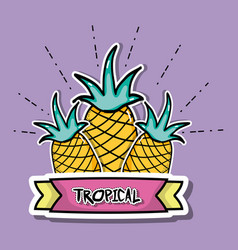Tropical pineapples patches fruit design vector