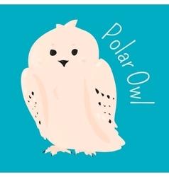 Polar owl isolated vector image vector image
