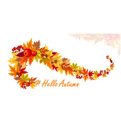 colorful autumn fall leaves vector image