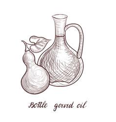 Drawing bottle gourd oil vector