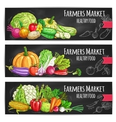 Farmers vegetables market sketched banners vector