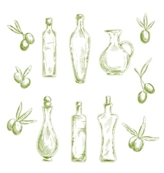 Organic olive oil with fresh fruits sketch icons vector