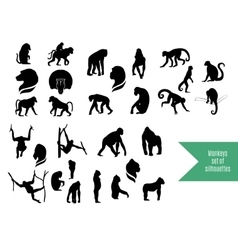 The big set of wild monkeys silhouettes vector image