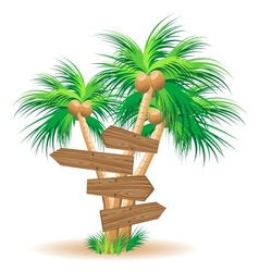 Wooden signboards on palm trees vector image