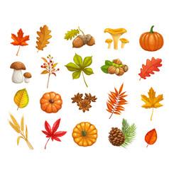 Autumn icons set vector