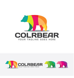 colorful bear logo design vector image