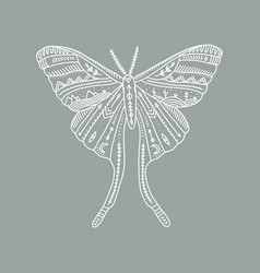 Moon moth wildlife concept boho tattoo art vector