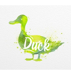 Painted animals duck vector