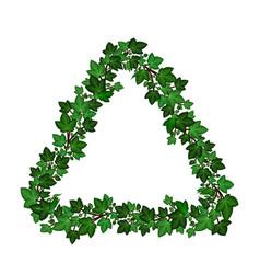 Triangular ivy leaves frame border green ivy vector