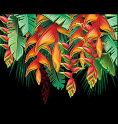 Tropical plants heliconia and flowers vector