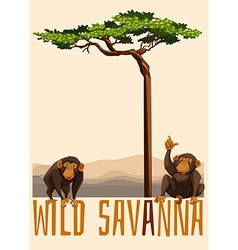 Two monkey under the tree vector