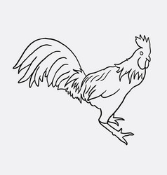 rooster artistic doodle vector image vector image