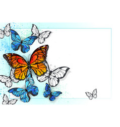 background with monarchs and morpho vector image