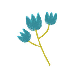 blue tulip flower spring sketch vector image