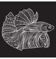 Betta Fish Zenart Stylized vector image