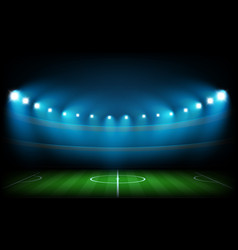 Soccer arena illuminated with spot lights vector