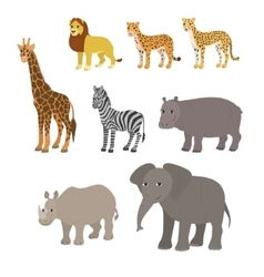 Cartoon set lion leopard cheetah giraffe zebra vector