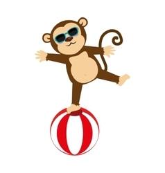 Circus monkey cartoon icon vector
