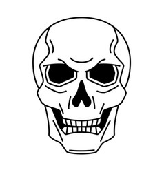 evil human skull mystic alchemy spirituality vector image
