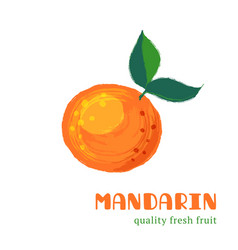 Fresh mandarin isolated on white background vector