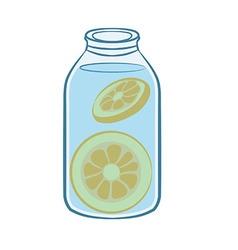 Orange Infuse Water vector image