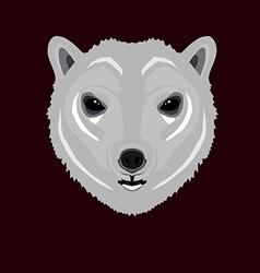 polarbear vector image
