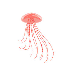 red colorful ocean jellyfish with long dotted vector image