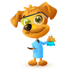 Yellow teacher dog holding flask chemistry lesson vector