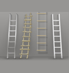 set of different ladders vector image