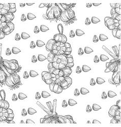 hand drawn seamless pattern of garlic vector image
