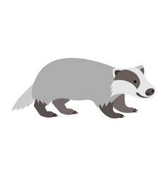 cute smiling wild badger cartoon vector image vector image