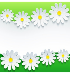 Floral green background 3d flower chamomile vector image vector image