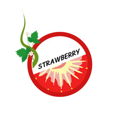 strawberry fruit icons flat style vector image