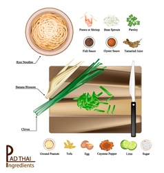16 Ingredients Pad Thai or Stir Fried Noodles vector