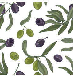 botanical seamless pattern with organic olive tree vector image