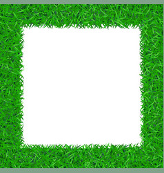green grass frame 3d isolated on white background vector image