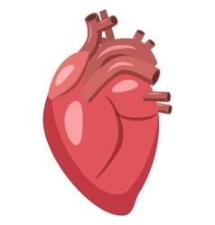Human heart icon cartoon style vector