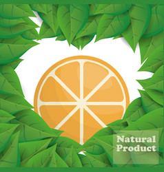 Orange natural product leaves shape heart vector
