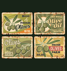 organic farm olives olive oil rusty metal plate vector image