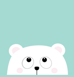 Polar white little small bear cub head face vector