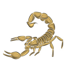 scorpion isolated on white background vector image vector image