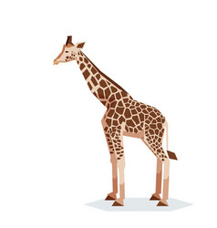 flat geometric giraffe vector image