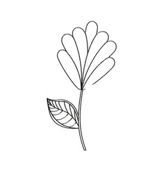 Flower decoration natural sketch vector
