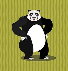 Panda angry Furious Chinese bear Animal furious vector image