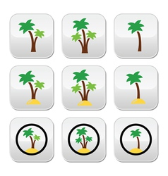 Palm trees exotic holidays on beach colorf vector image