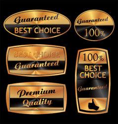 best choice golden set vector image vector image