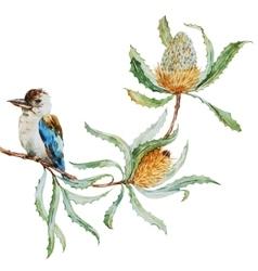 Australian kookaburra bird vector